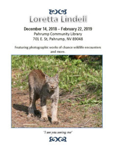 Loretta Lindell Artist Reception @ Pahrump Community Library | Pahrump | Nevada | United States